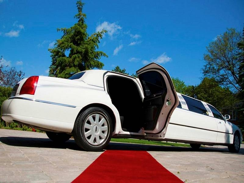Red-carpet-Limo11